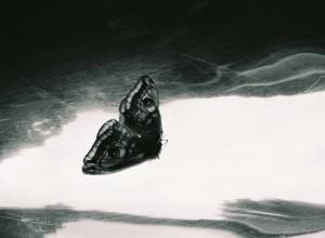 21.  'descent', digital image